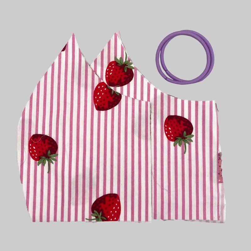 face mask kit strawberry